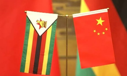 Zimbabwe – Chine : inauguration de l'extension de la centrale hydroélectrique