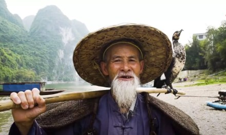 «L'art de pêcher avec les oiseaux en Chine»