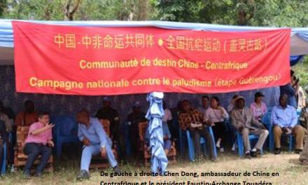 La contribution de la Chine à la lutte contre le paludisme en Centrafrique: actualité et pertinence