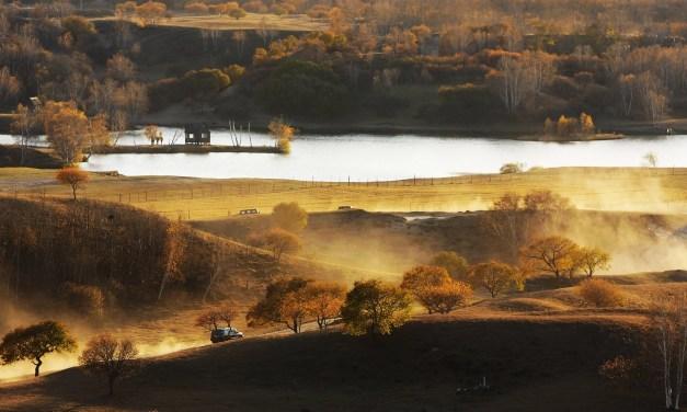 Saihanba, d'un territoire aride à la plus grande forêt artificielle du monde