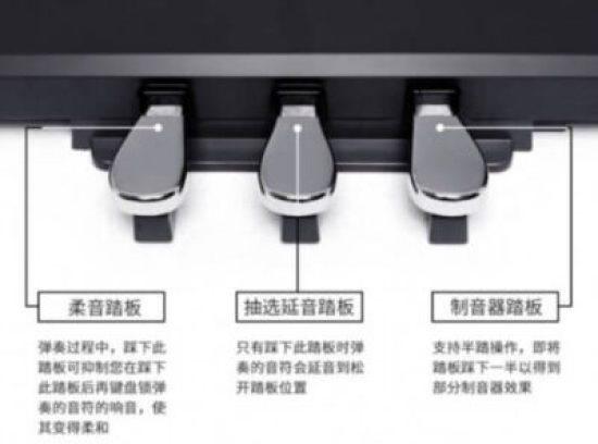 gq1 e1563304195283 - 3款$500以下最佳入门级钢琴 美国买钢琴指南