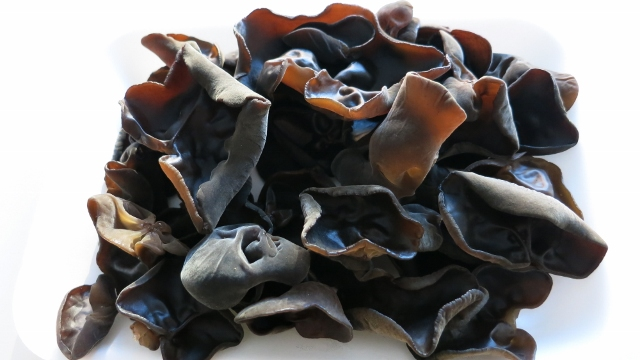 Cloud-Ear Mushroom – For Spring Detox
