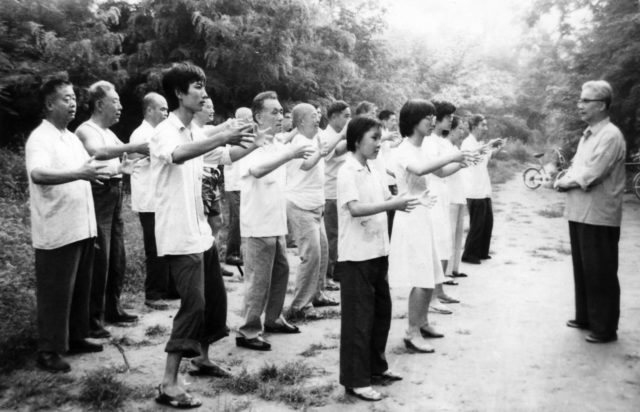 The Most Important Qigong II – (Standing Post – Zhan Zhuang)