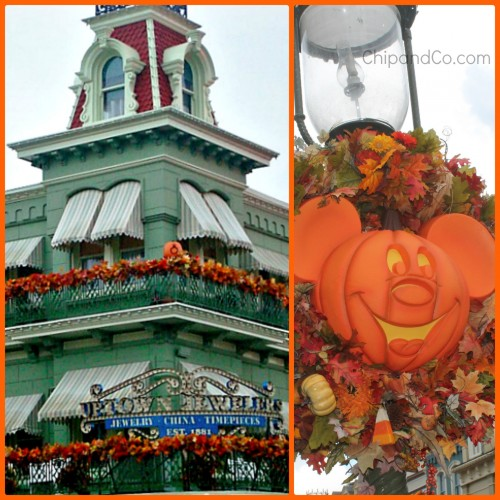 Magic Kingdom Fall 3