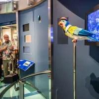 Walt Disney Museum - Pepe del Presidio