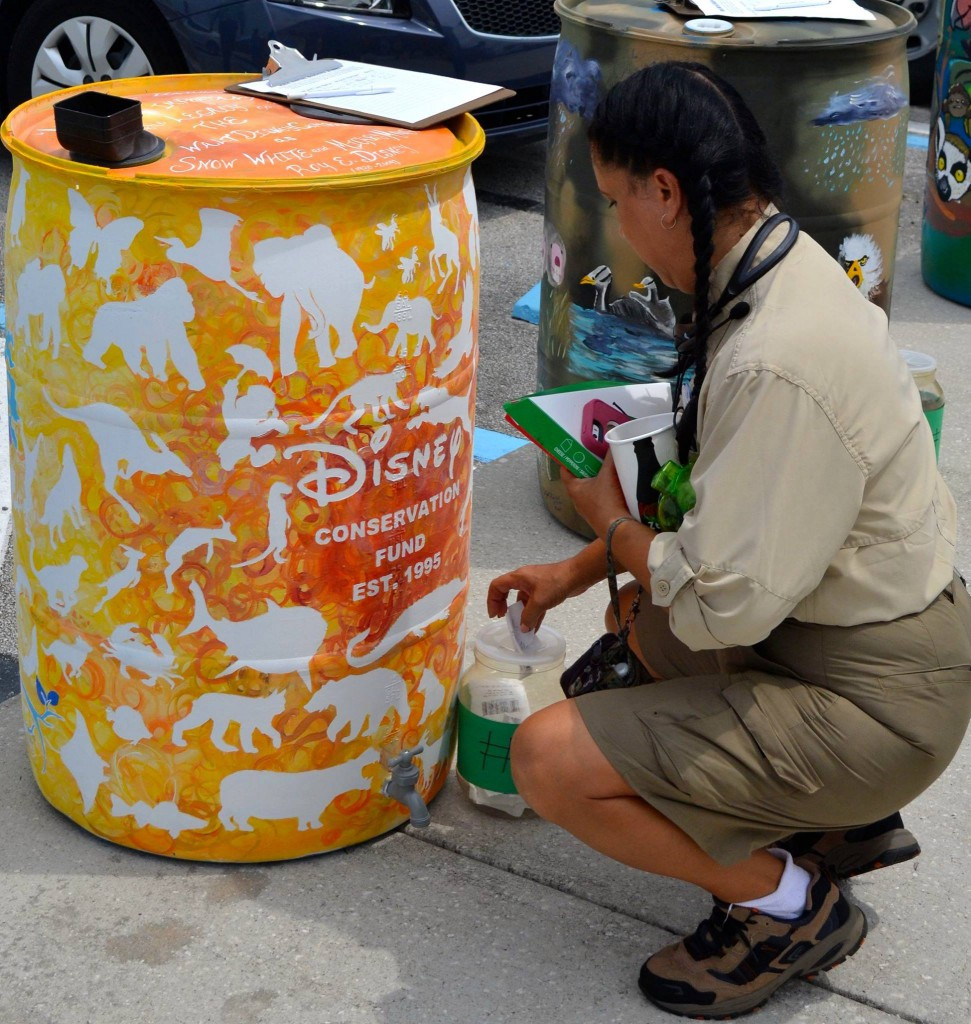 Disney Cast Members Show Their Love of Nature Through Creativity