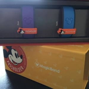 MagicBands5