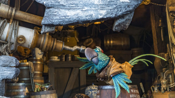 More Details: 'Miss Adventure Falls' at Disney's Typhoon Lagoon 1