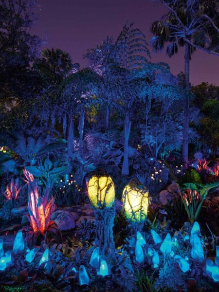 Nighttime in Pandora 1