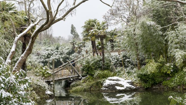 PHOTOS: Disneyland Paris Covered In Snow Creates Magical Photos 5