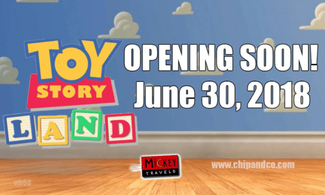 Toy Story Land Vacation Package