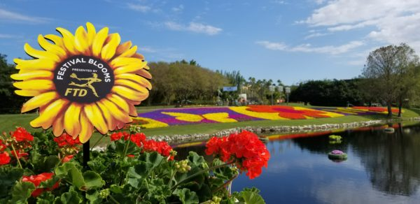 Festival Blooms - Presented by FTD®