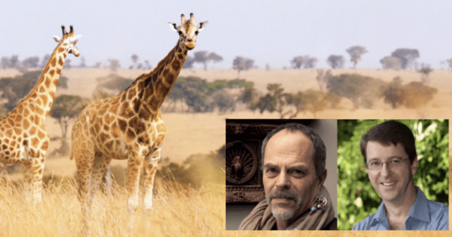 Visit Africa with Disney Imagineer Joe Rohde and Dr. Mark Penning