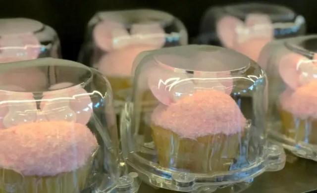 Millennial Pink Cupcake