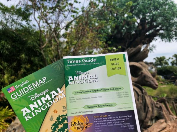 Animal Kingdom Time and Animal Guide are Now Combined