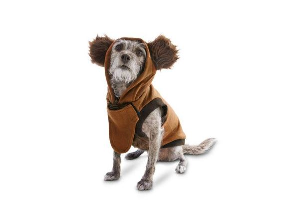 Dress Your Dog Up As An Ewok For Halloween Theyll Definitely Love