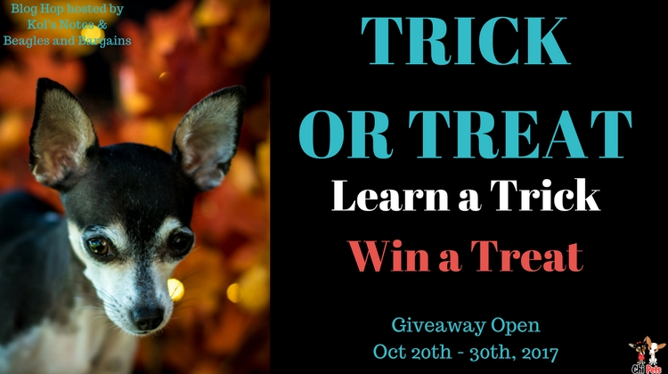 Trick Or Treat Giveaway 2017:  Teach Your Dog to Ring a Bell