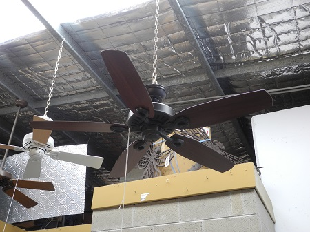 Builder Elite Ceiling Fan
