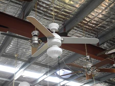 Carera Ceiling Fan