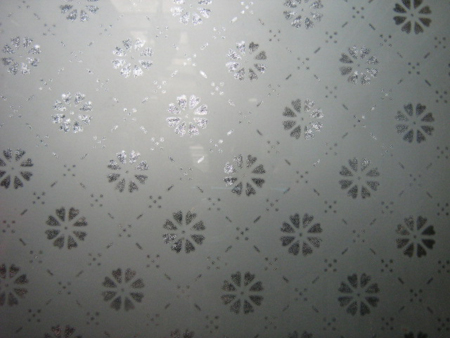 Etched Glass Pattern No 2