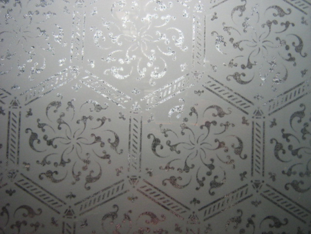 Etched Glass Pattern No 6