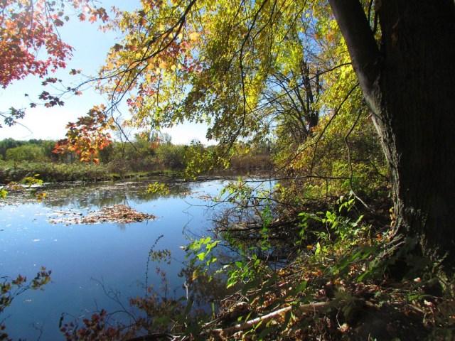 Lake Steven