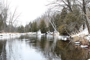 Winter view of the river upstream from the preserve