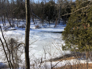 One might walk all the way across the river, but then, how thick is the ice really?
