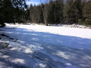 The Chippewa River is frozen solid looking SE from the border of Sylvan Solace
