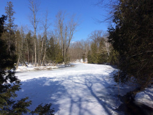 Much of the Chippewa River bordering Sylvan Solace is completely frozen this winter