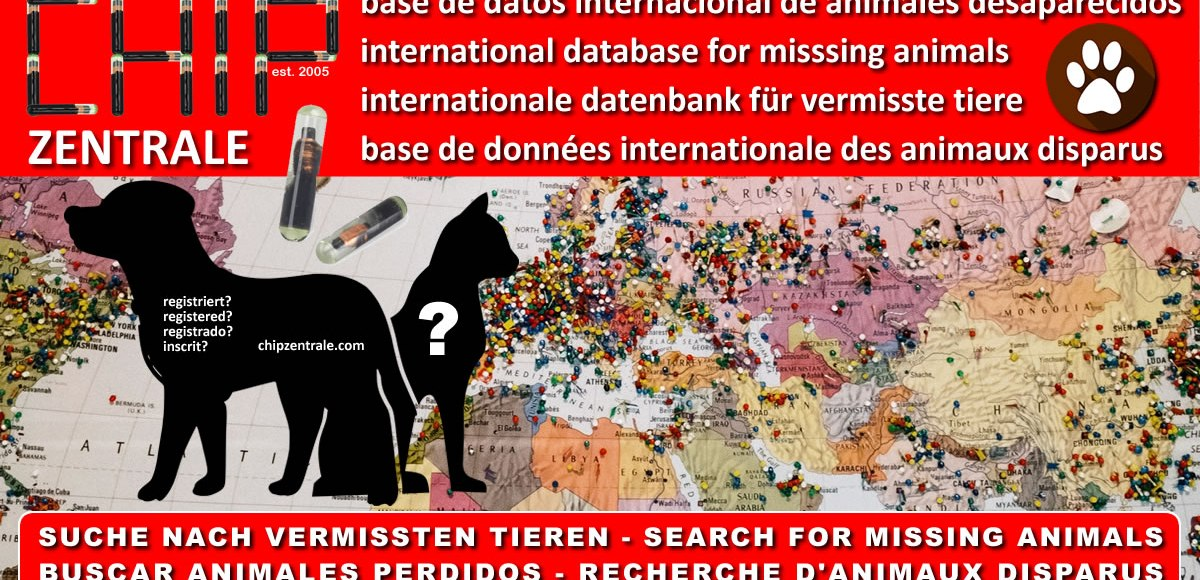 base de datos internacional de animales desaparecidos international database for misssing animals internationale datenbank für vermisste tiere base de données internationale des animaux disparus SUCHE NACH VERMISSTEN TIEREN - SEARCH FOR MISSING ANIMALS BUSCAR ANIMALES PERDIDOS - RECHERCHE D'ANIMAUX DISPARUS