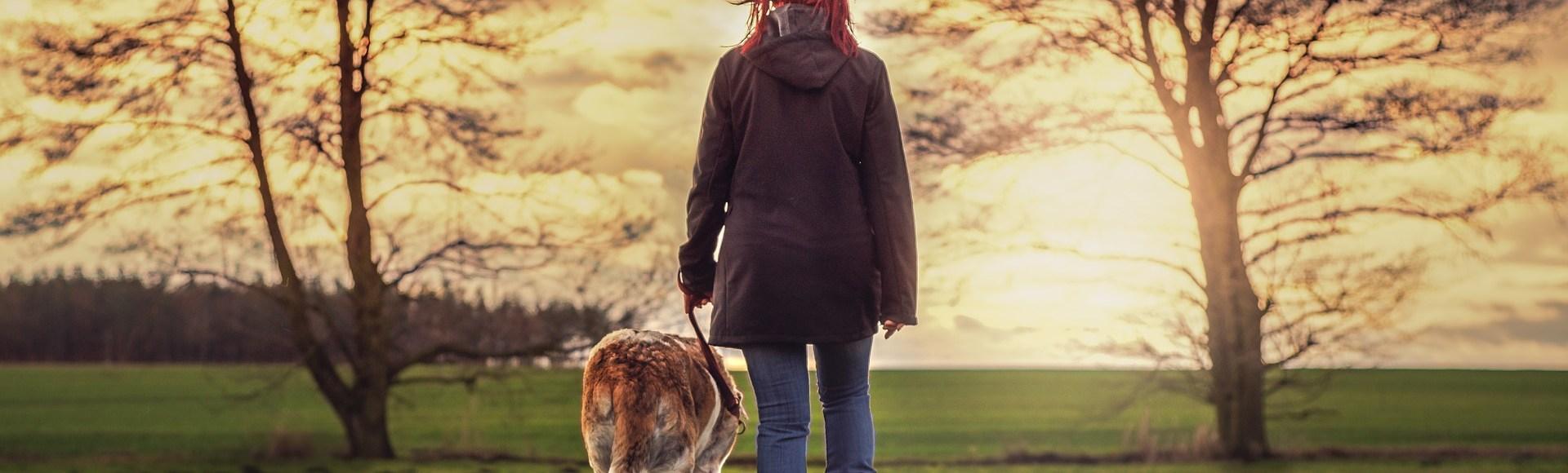Gesünder Leben mit Hund