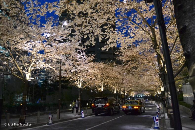 Roppongi Itchome sakura de noche Tokio 3