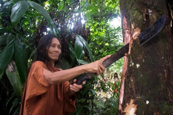 Perú reconoce propiedad intelectual de conocimientos indígenas