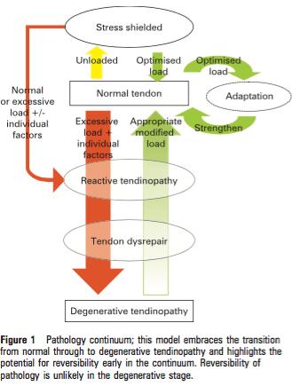 Source : Cook et al 2009