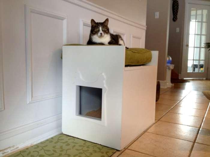 ottoman litter box