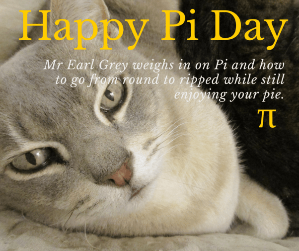 Pi Day - cat weighs in