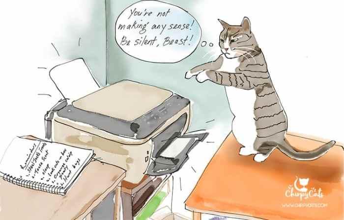 cat and printer