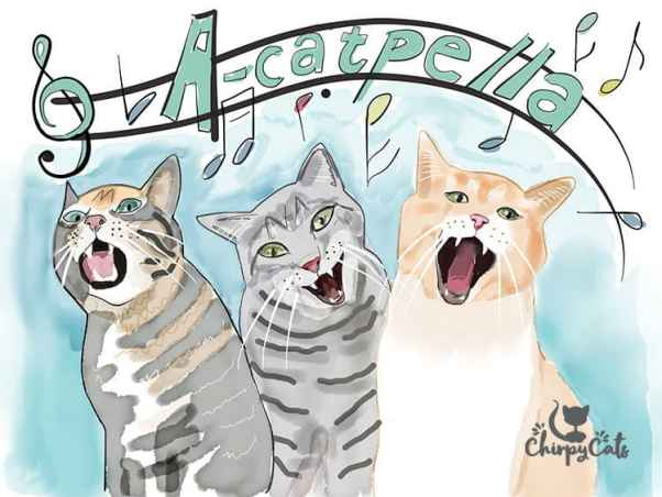 acatpella cat sounds