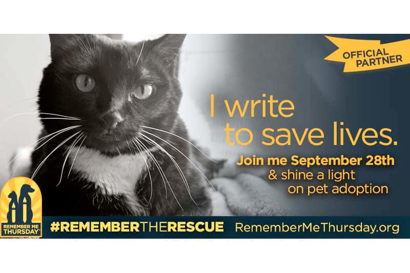 Help us Shine a Light on Pet Adoption #RememberMeThursday
