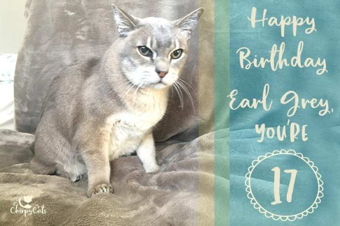 Happy birthday to Earl Grey