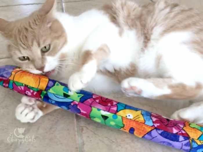 Jimmy the cat playing with bunny kicking toy Kitty Kick Stix