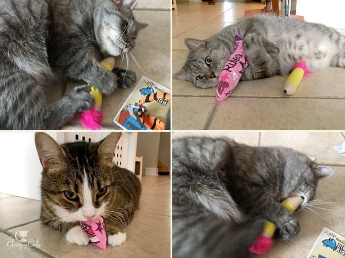 KitNipBox high school theme cat toys