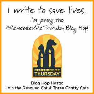 Blog hop Remember Me Thursday
