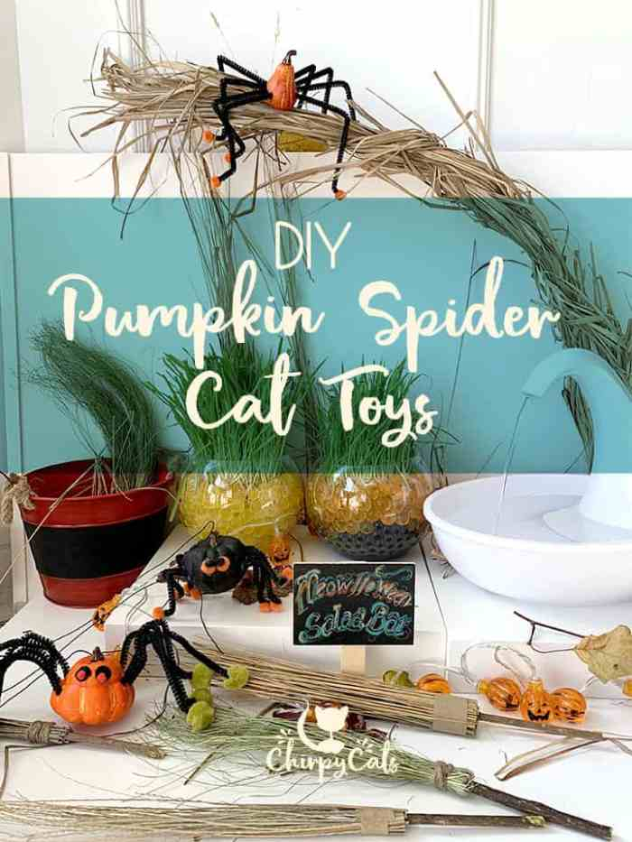Enhance Your Cat\'s Playtime with these Frighteningly Cute Pumpkin Spider Toys
