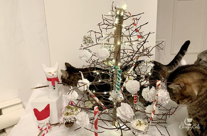 tabby cat crawling behind the Christmas tree