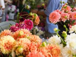 Surprise Your Loved Ones By Sending Beautiful Flowers And Incredible Gifts Online