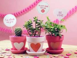 Some Wonderful Flower Gift Ideas for Those Who Love Thoughtful Gifting