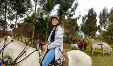 alex horses 1a