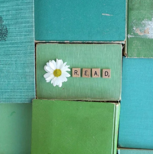 Книги четене 5